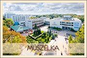 Muszelka